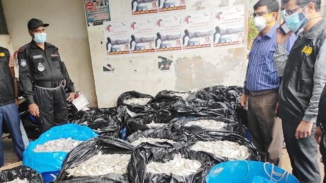 কারওয়ান বাজারে জব্দ ২ টন জাটকা এতিমখানায় বিলি
